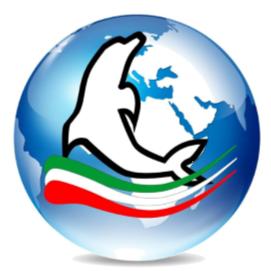dolphin logo 2